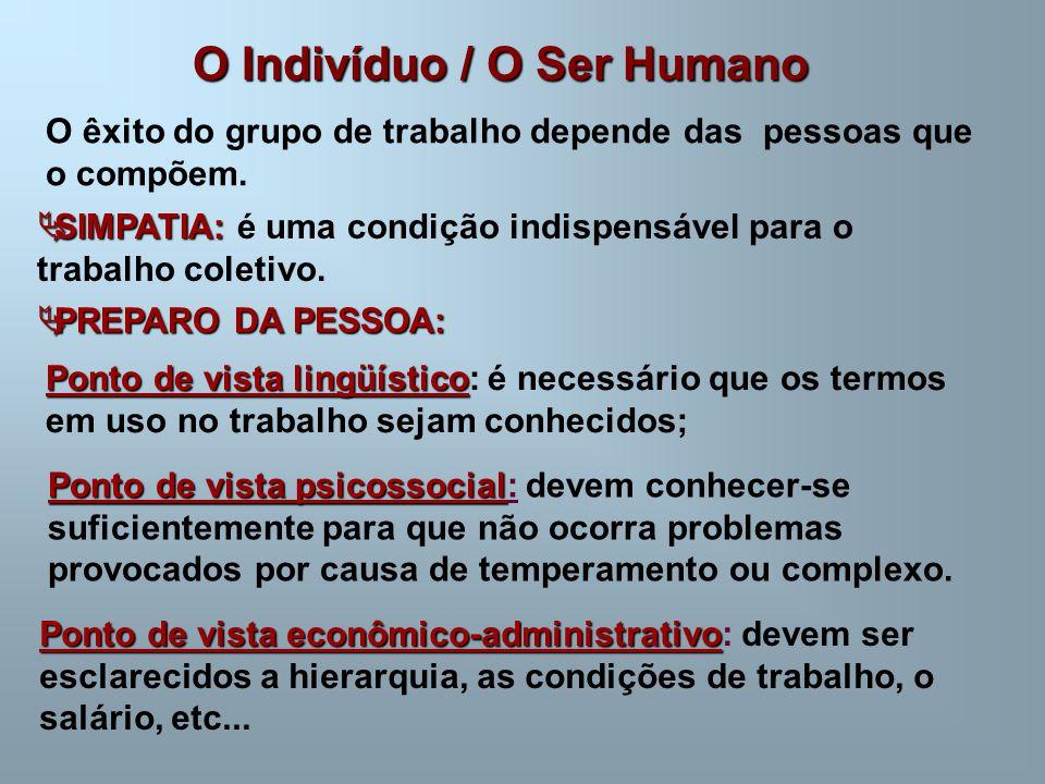 O Indivíduo / O Ser Humano O êxito do grupo de trabalho depende das pessoas que o compõem.  SIMPATIA:  SIMPATIA: é uma condição indispensável para o