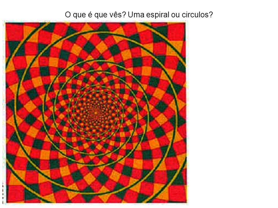 O que é que vês? Uma espiral ou circulos?