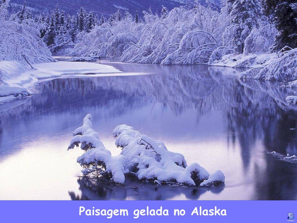 Paisagem gelada no Alaska