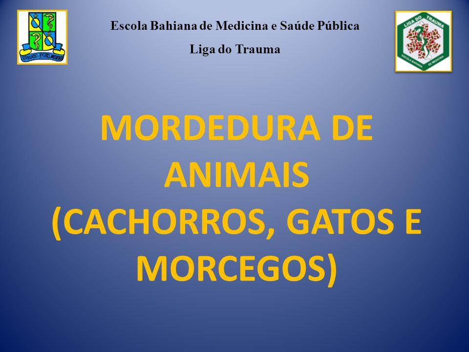 MORDEDURA DE ANIMAIS (CACHORROS, GATOS E MORCEGOS) Escola Bahiana de Medicina e Saúde Pública Liga do Trauma