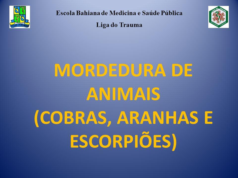 MORDEDURA DE ANIMAIS (COBRAS, ARANHAS E ESCORPIÕES) Escola Bahiana de Medicina e Saúde Pública Liga do Trauma