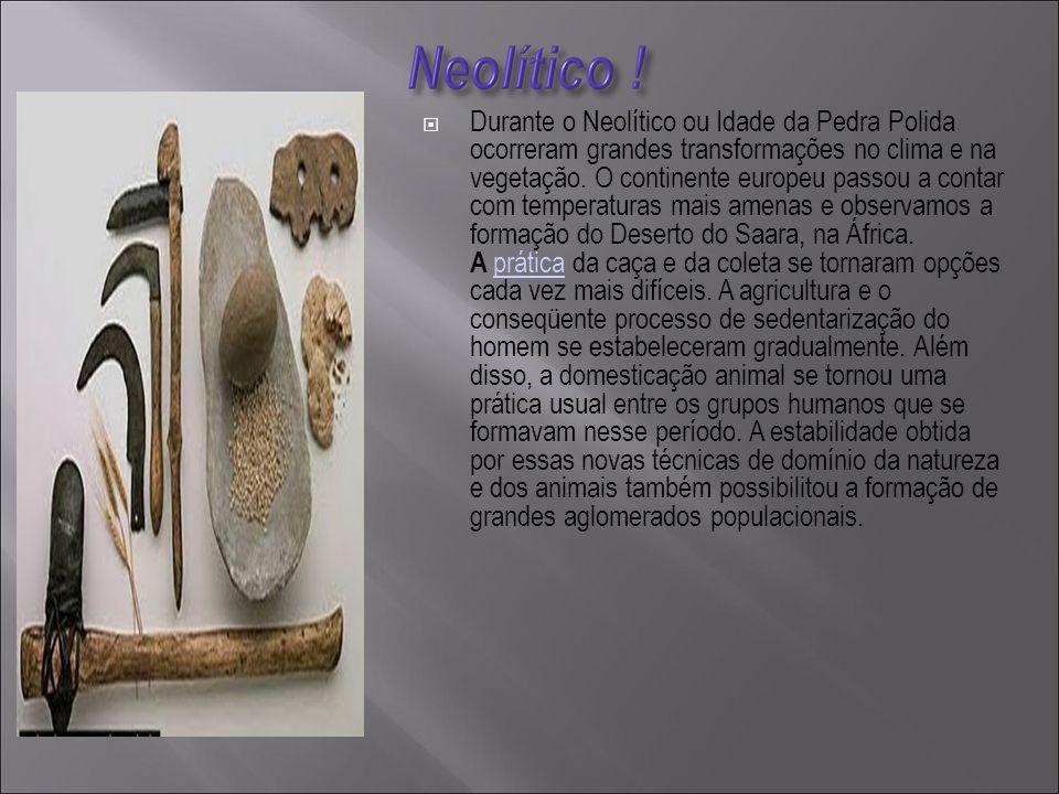  Durante o Neolítico ou Idade da Pedra Polida ocorreram grandes transformações no clima e na vegetação.