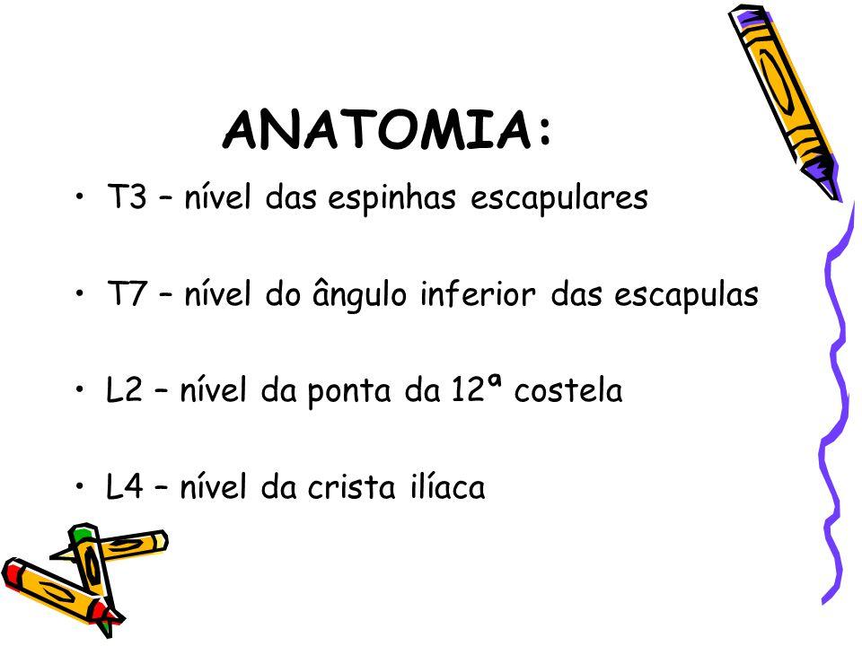 ANATOMIA: T3 – nível das espinhas escapulares T7 – nível do ângulo inferior das escapulas L2 – nível da ponta da 12ª costela L4 – nível da crista ilía