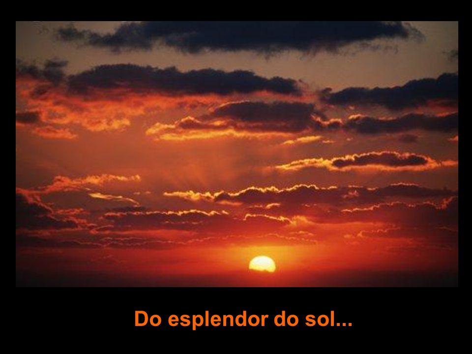 Do esplendor do sol...