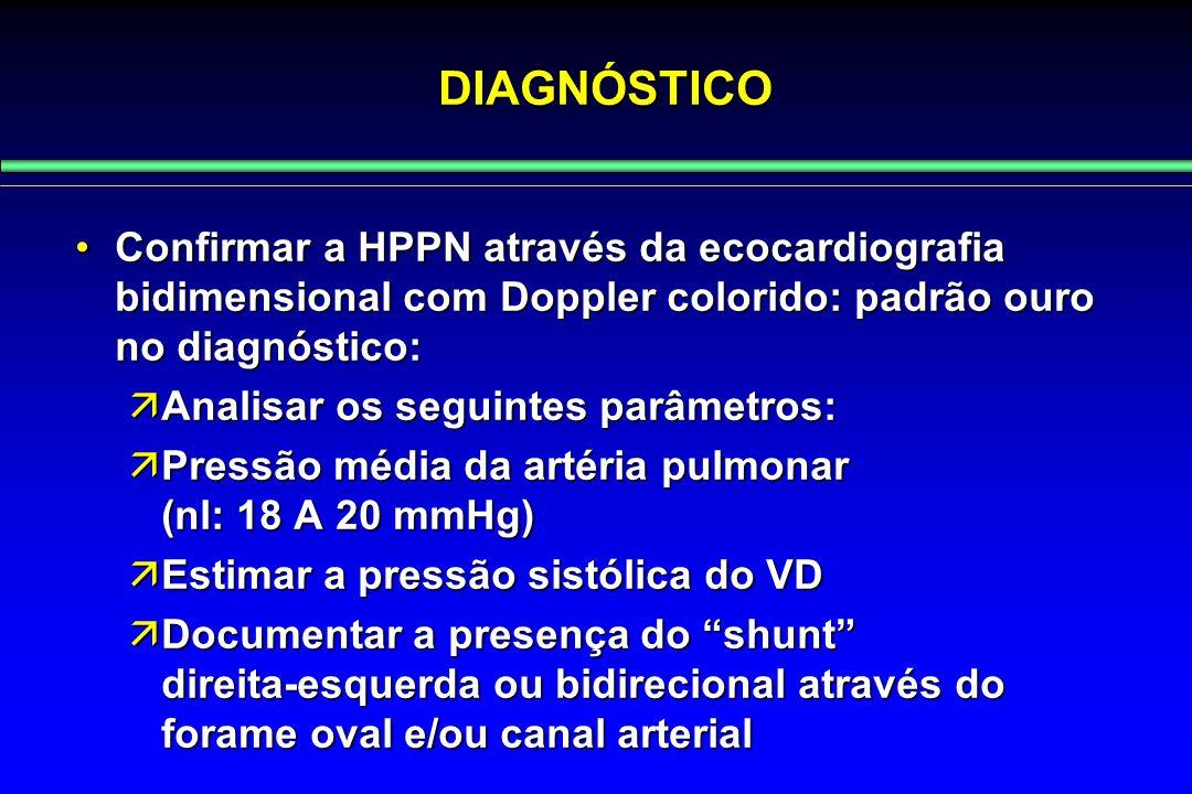 Confirmar a HPPN através da ecocardiografia bidimensional com Doppler colorido: padrão ouro no diagnóstico:Confirmar a HPPN através da ecocardiografia