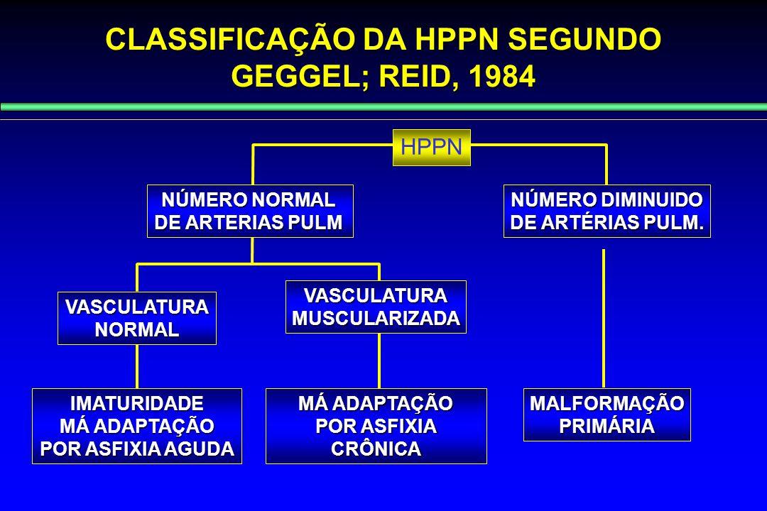 CLASSIFICAÇÃO DA HPPN SEGUNDO GEGGEL; REID, 1984 HPPN NÚMERO NORMAL DE ARTERIAS PULM NÚMERO DIMINUIDO DE ARTÉRIAS PULM. VASCULATURANORMAL VASCULATURAM
