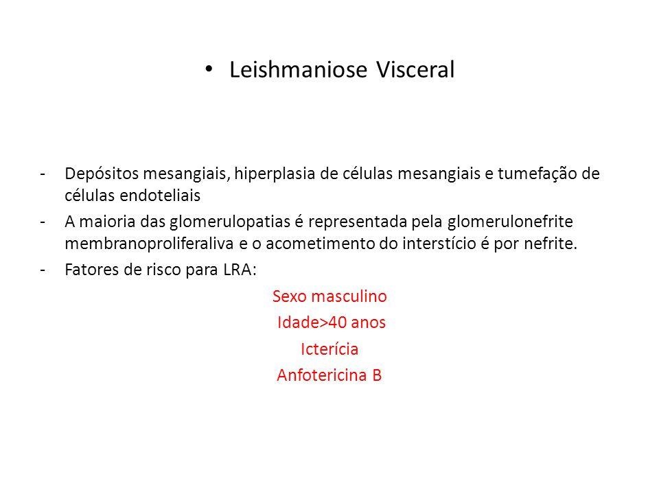 Leishmaniose Visceral -Depósitos mesangiais, hiperplasia de células mesangiais e tumefação de células endoteliais -A maioria das glomerulopatias é rep
