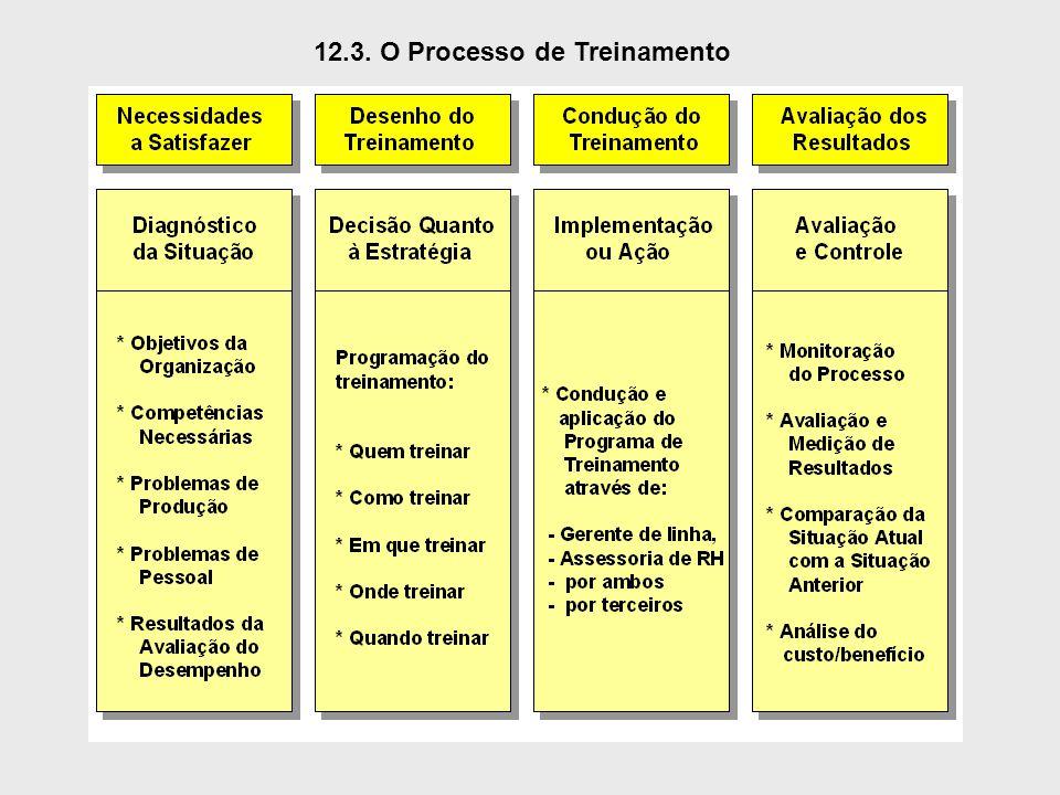 12.3. O Processo de Treinamento