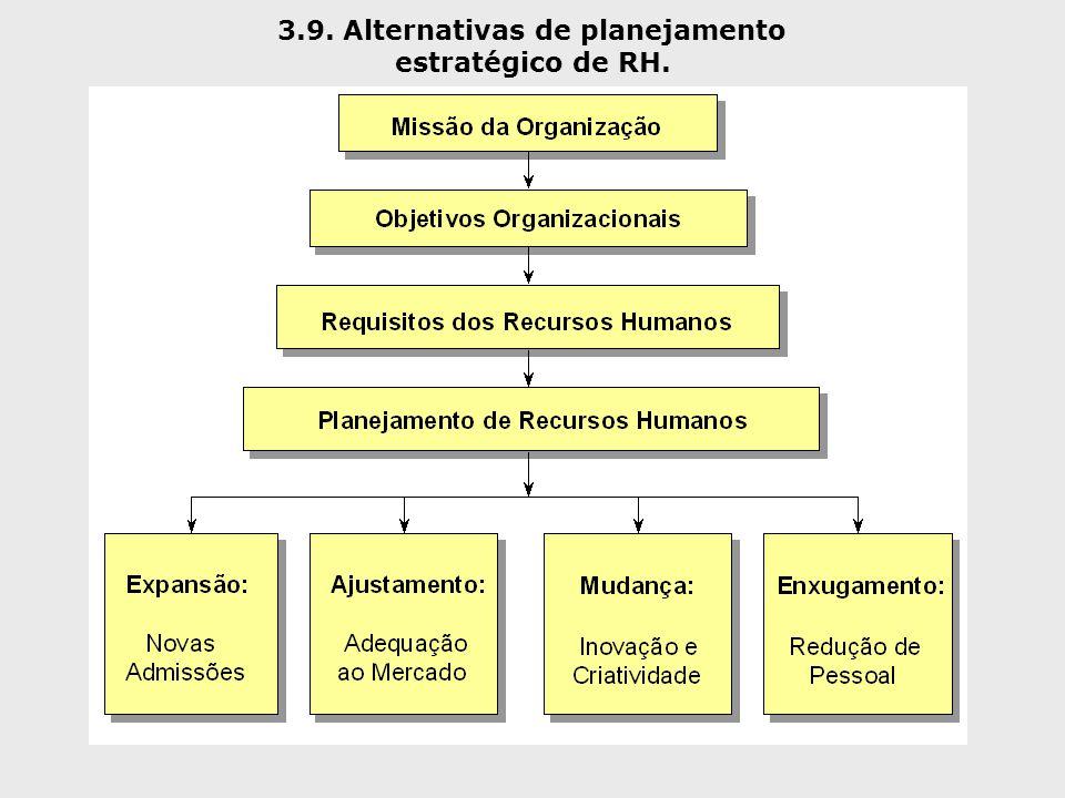 3.9. Alternativas de planejamento estratégico de RH.