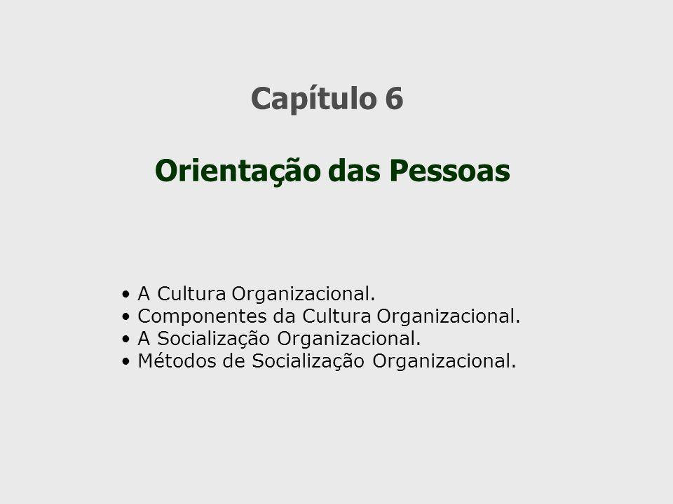 Capítulo 6 Orientação das Pessoas A Cultura Organizacional. Componentes da Cultura Organizacional. A Socialização Organizacional. Métodos de Socializa