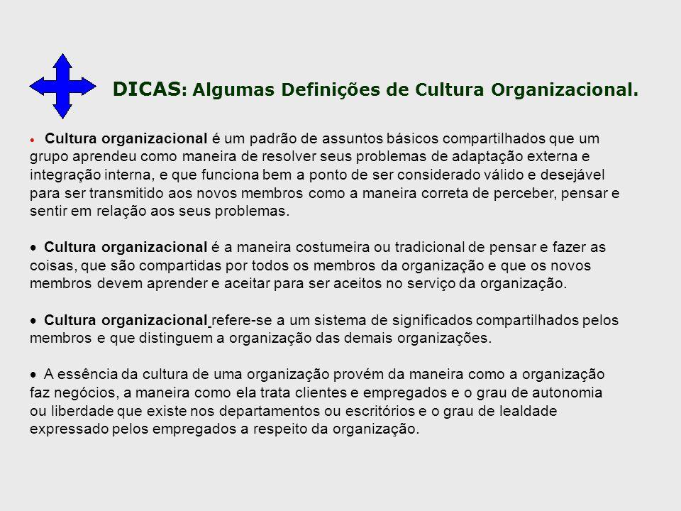 DICAS : Algumas Definições de Cultura Organizacional.  Cultura organizacional é um padrão de assuntos básicos compartilhados que um grupo aprendeu co