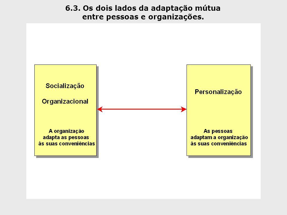 6.3. Os dois lados da adaptação mútua entre pessoas e organizações.