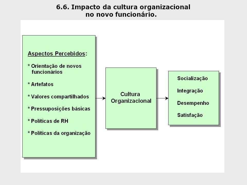 6.6. Impacto da cultura organizacional no novo funcionário.