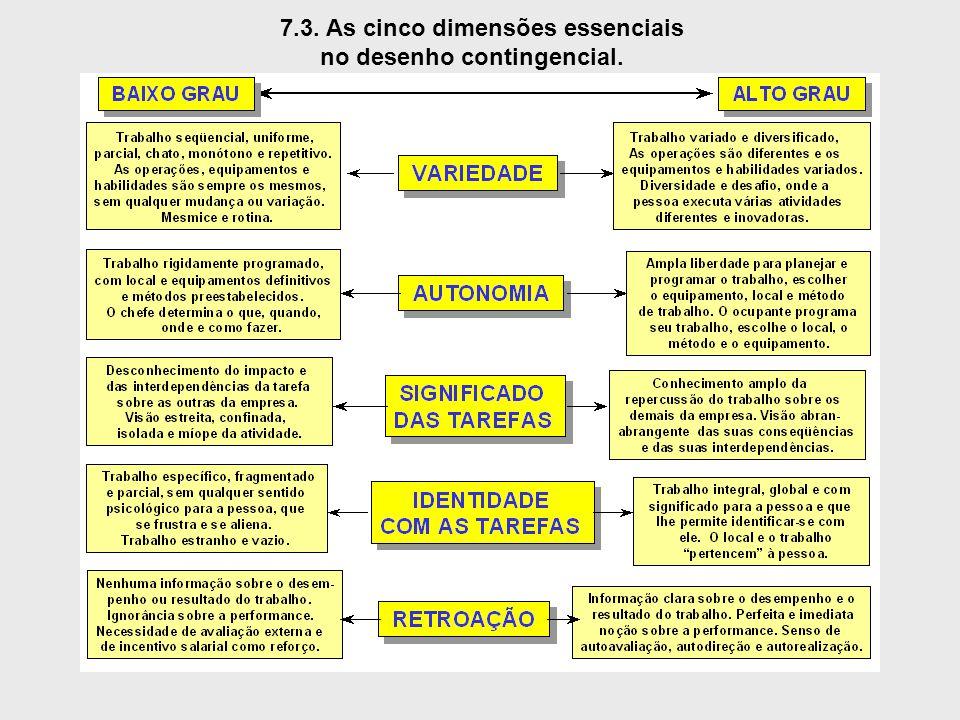7.3. As cinco dimensões essenciais no desenho contingencial.