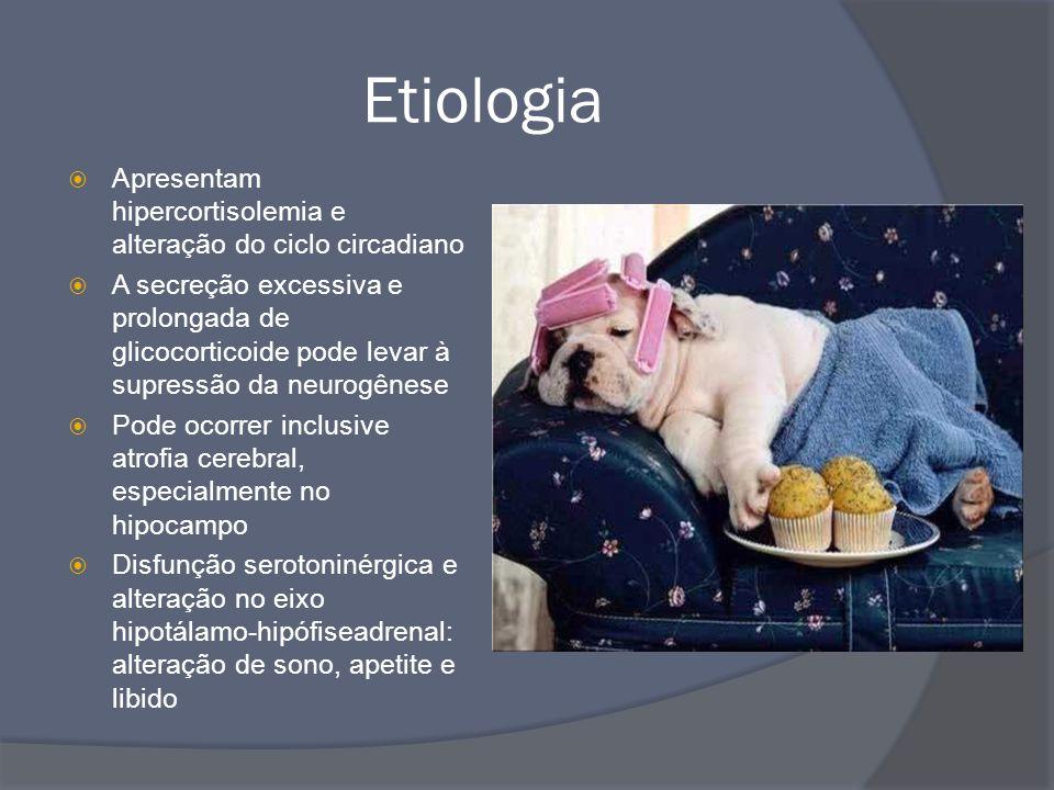 Etiologia  Apresentam hipercortisolemia e alteração do ciclo circadiano  A secreção excessiva e prolongada de glicocorticoide pode levar à supressão