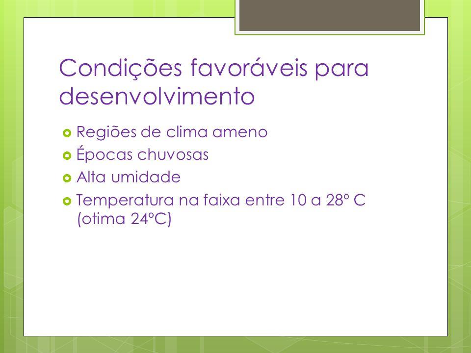 Condições favoráveis para desenvolvimento  Regiões de clima ameno  Épocas chuvosas  Alta umidade  Temperatura na faixa entre 10 a 28º C (otima 24º