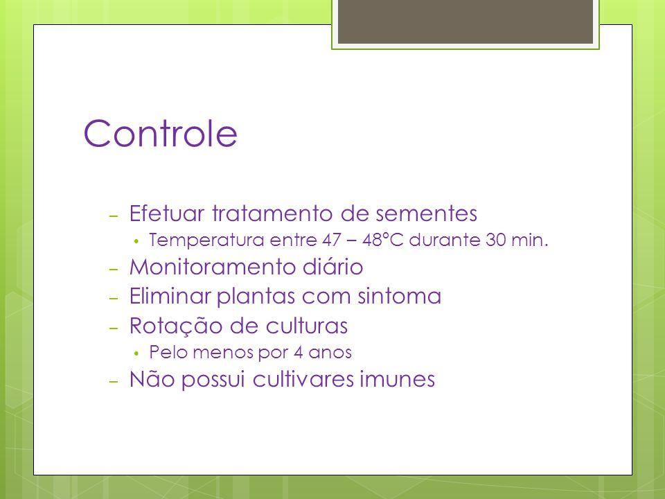 Controle – Efetuar tratamento de sementes Temperatura entre 47 – 48ºC durante 30 min. – Monitoramento diário – Eliminar plantas com sintoma – Rotação