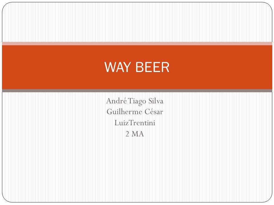 Consumidor: A Way Beer possui um público alvo relativamente seleto (classes A/B), tanto quando se trata do preço de seu produto relacionado a outros no mercado, como quando se fala da qualidade do mesmo que se caracteriza por procurar paladares apurados, que entendem do assunto, no caso Cerveja.