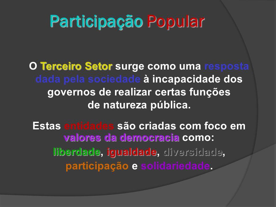 Participação Popular Terceiro Setor O Terceiro Setor surge como uma resposta dada pela sociedade à incapacidade dos governos de realizar certas funções de natureza pública.