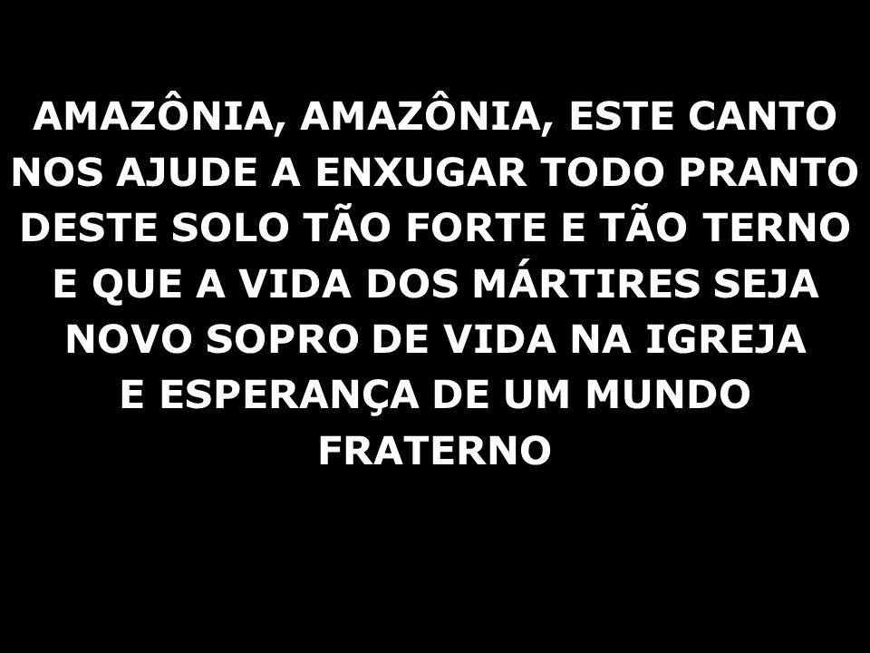 AMAZÔNIA, AMAZÔNIA, ESTE CANTO NOS AJUDE A ENXUGAR TODO PRANTO DESTE SOLO TÃO FORTE E TÃO TERNO E QUE A VIDA DOS MÁRTIRES SEJA NOVO SOPRO DE VIDA NA I