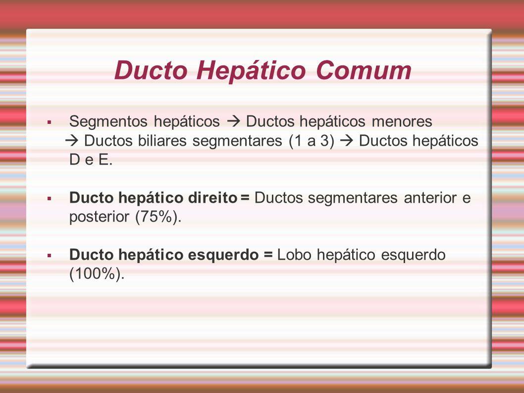 Ducto Hepático Comum  Segmentos hepáticos  Ductos hepáticos menores  Ductos biliares segmentares (1 a 3)  Ductos hepáticos D e E.  Ducto hepático