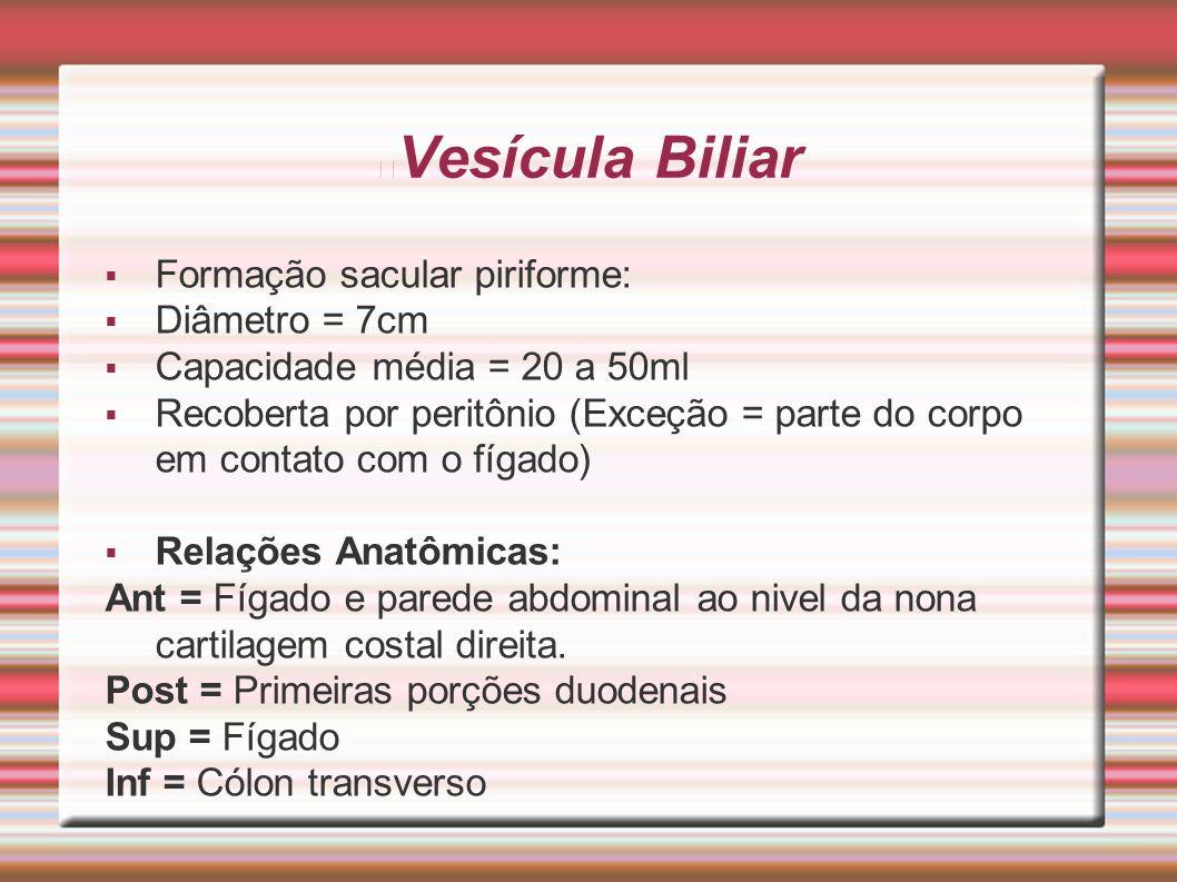 Vesícula Biliar  Formação sacular piriforme:  Diâmetro = 7cm  Capacidade média = 20 a 50ml  Recoberta por peritônio (Exceção = parte do corpo em c