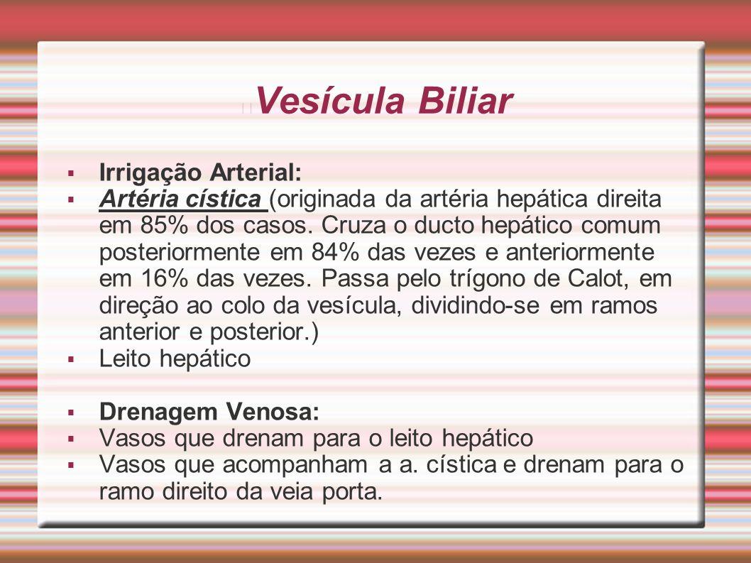 Vesícula Biliar  Irrigação Arterial:  Artéria cística (originada da artéria hepática direita em 85% dos casos. Cruza o ducto hepático comum posterio
