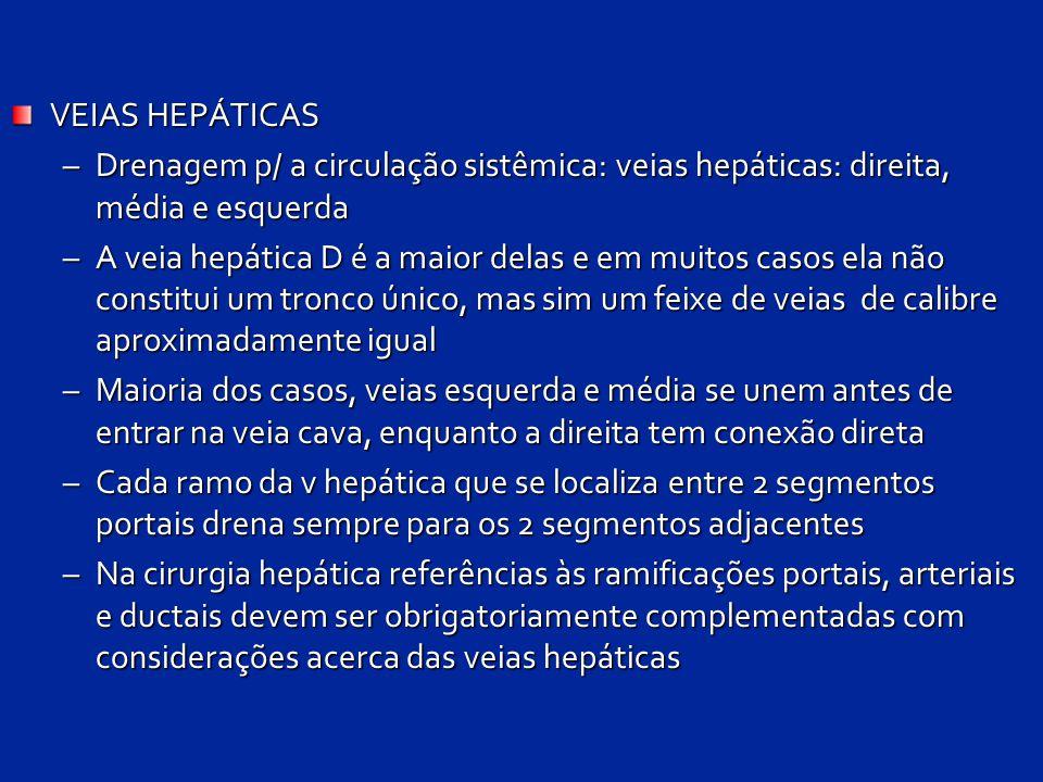 VEIAS HEPÁTICAS –Drenagem p/ a circulação sistêmica: veias hepáticas: direita, média e esquerda –A veia hepática D é a maior delas e em muitos casos e