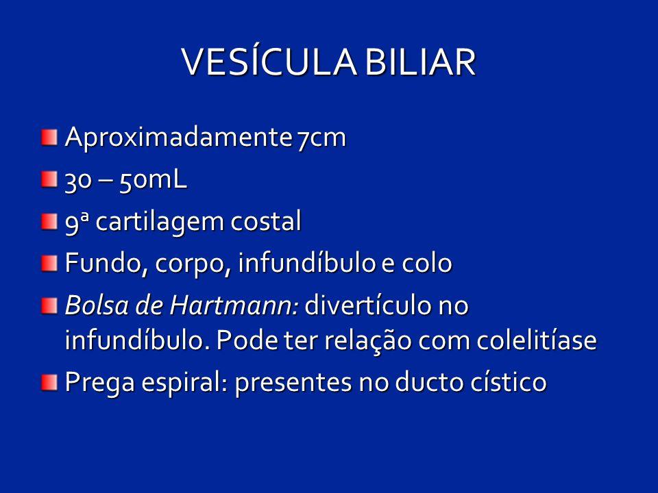 VESÍCULA BILIAR Aproximadamente 7cm 30 – 50mL 9 a cartilagem costal Fundo, corpo, infundíbulo e colo Bolsa de Hartmann: divertículo no infundíbulo. Po