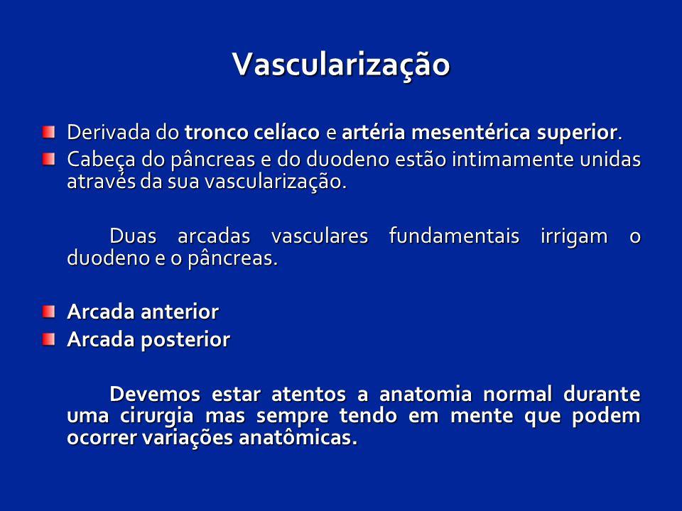 Vascularização Derivada do tronco celíaco e artéria mesentérica superior. Cabeça do pâncreas e do duodeno estão intimamente unidas através da sua vasc
