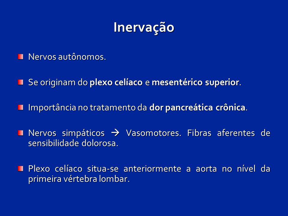 Inervação Nervos autônomos. Se originam do plexo celíaco e mesentérico superior. Importância no tratamento da dor pancreática crônica. Nervos simpátic