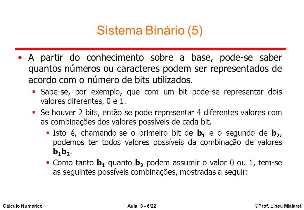 ©Prof. Lineu MialaretAula 8 - 6/22Cálculo Numérico Sistema Binário (5) A partir do conhecimento sobre a base, pode-se saber quantos números ou caracte