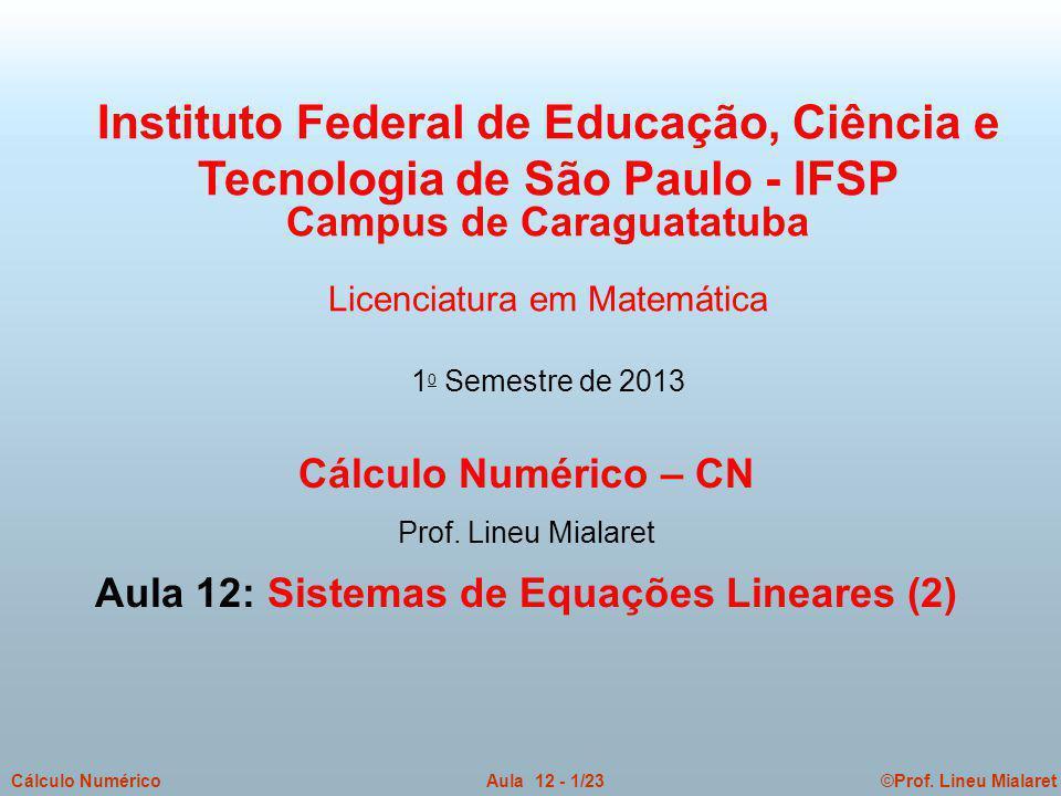 ©Prof. Lineu MialaretAula 12 - 1/23Cálculo Numérico Cálculo Numérico – CN Prof. Lineu Mialaret Aula 12: Sistemas de Equações Lineares (2) Instituto Fe