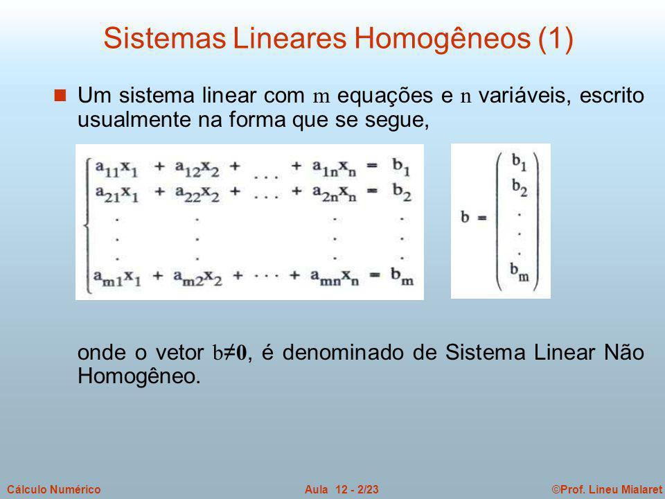 ©Prof. Lineu MialaretAula 12 - 2/23Cálculo Numérico Um sistema linear com m equações e n variáveis, escrito usualmente na forma que se segue, onde o v