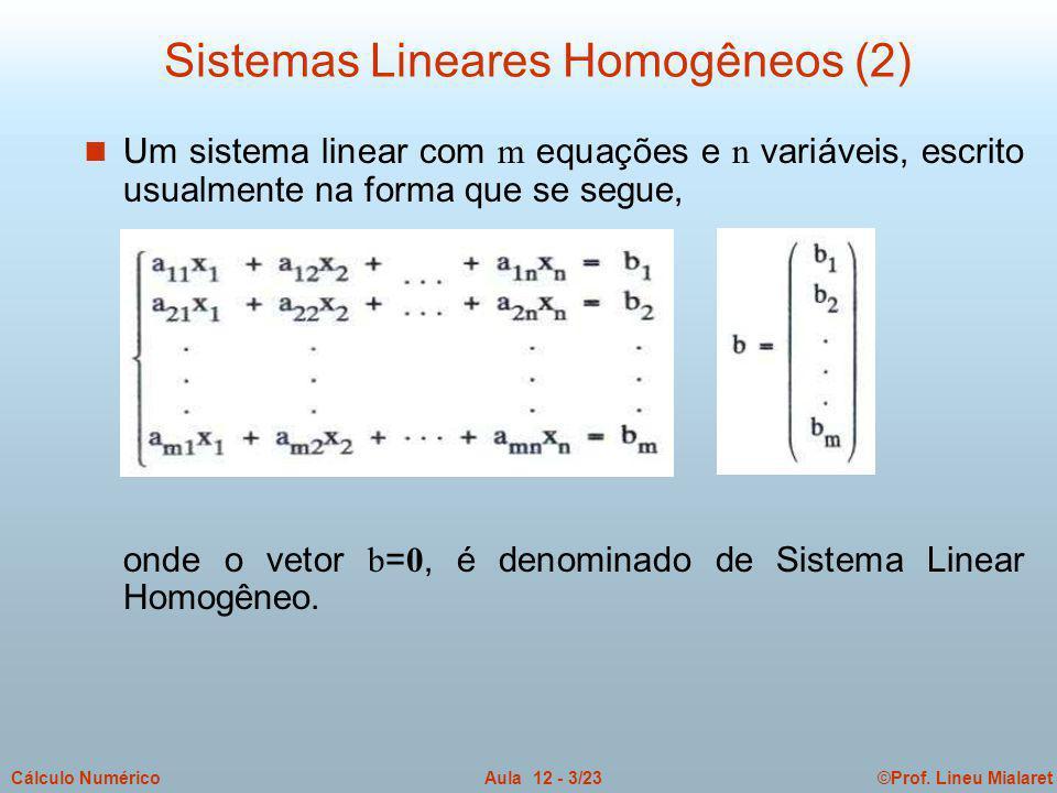 ©Prof. Lineu MialaretAula 12 - 3/23Cálculo Numérico Um sistema linear com m equações e n variáveis, escrito usualmente na forma que se segue, onde o v