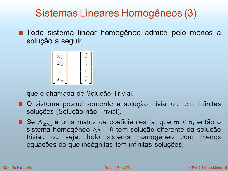 ©Prof. Lineu MialaretAula 12 - 4/23Cálculo Numérico n Todo sistema linear homogêneo admite pelo menos a solução a seguir, que é chamada de Solução Tri