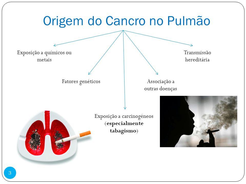 Origem do Cancro no Pulmão Exposição a carcinogéneos (especialmente tabagismo) Exposição a químicos ou metais Fatores genéticosAssociação a outras doe