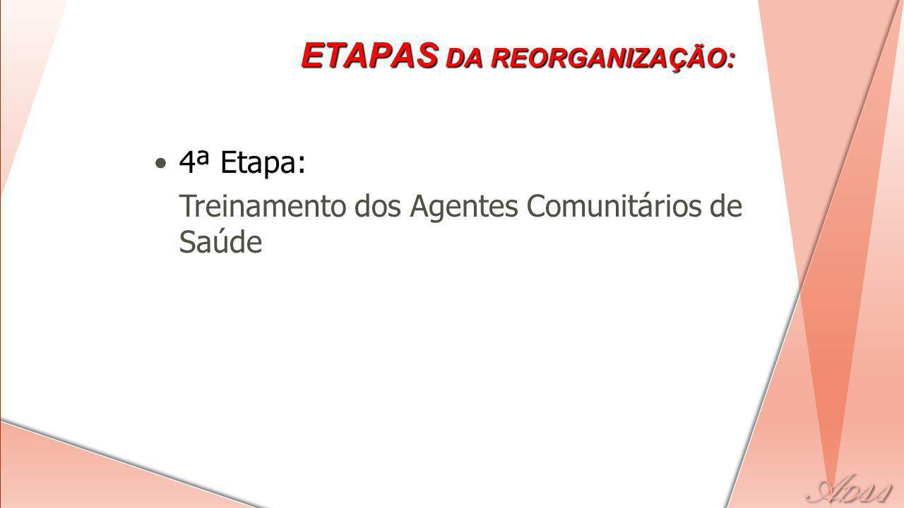 4ª Etapa: Treinamento dos Agentes Comunitários de Saúde ETAPAS DA REORGANIZAÇÃO: