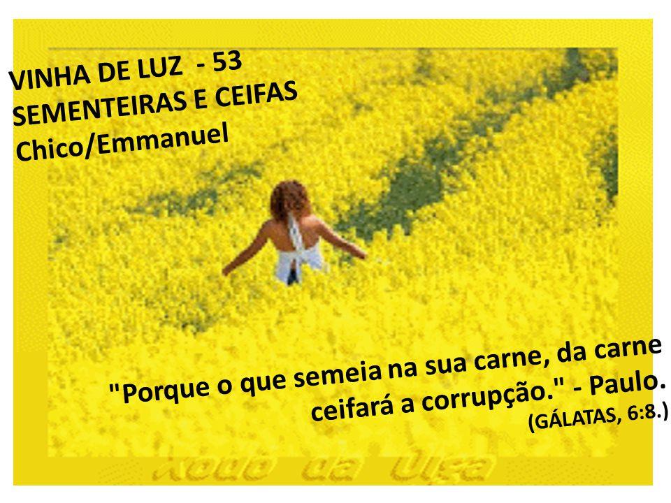 53 -- SEMENTEIRAS E CEIFAS Porque o que semeia na sua carne, da carne ceifará a corrupção. - Paulo.