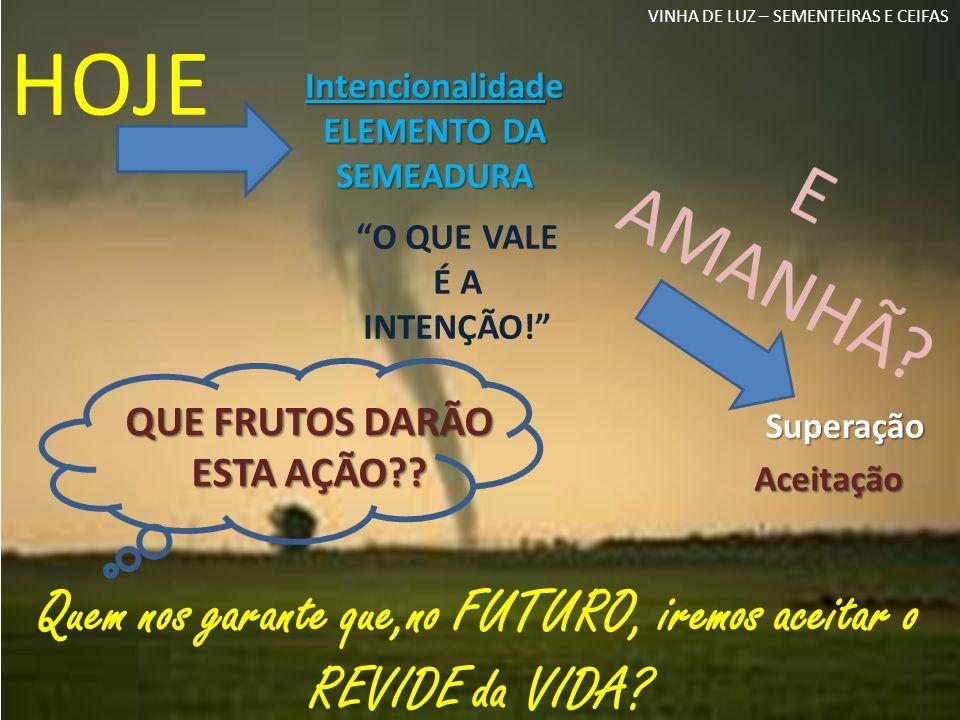 Ponderação Elemento da Semeadura VINHA DE LUZ – SEMENTEIRAS E CEIFAS SE...