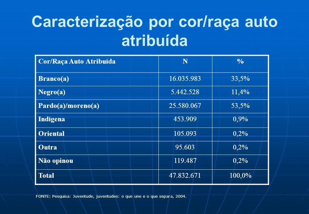 Caracterização por cor/raça auto atribuída Cor/Raça Auto AtribuídaN% Branco(a)16.035.98333,5% Negro(a)5.442.52811,4% Pardo(a)/moreno(a)25.580.06753,5%
