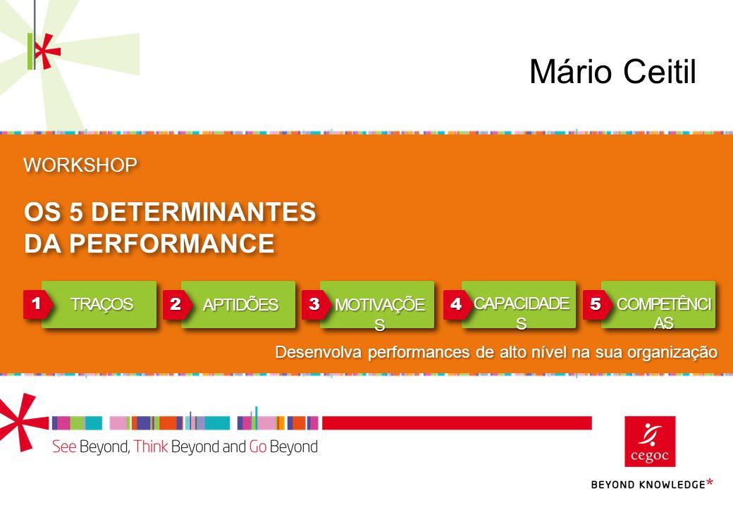 WORKSHOP OS 5 DETERMINANTES DA PERFORMANCE 11 22334455 TRAÇOS APTIDÕES MOTIVAÇÕE S CAPACIDADE S COMPETÊNCI AS Desenvolva performances de alto nível na