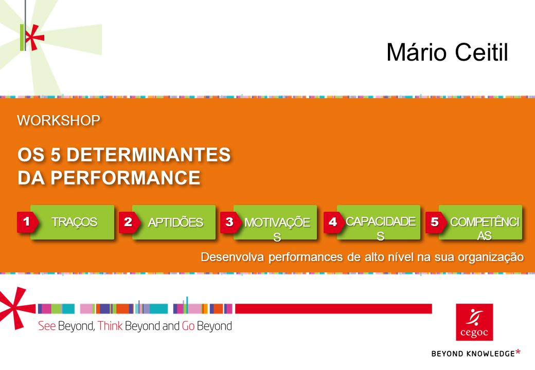 12 Modelo básico: 5D Performance Competências Capacidades Aptidões Traços Domínios Não Visíveis Domínios Visíveis