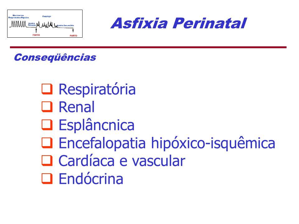 Asfixia Perinatal  Respiratória  Renal  Esplâncnica  Encefalopatia hipóxico-isquêmica  Cardíaca e vascular  Endócrina Conseqüências