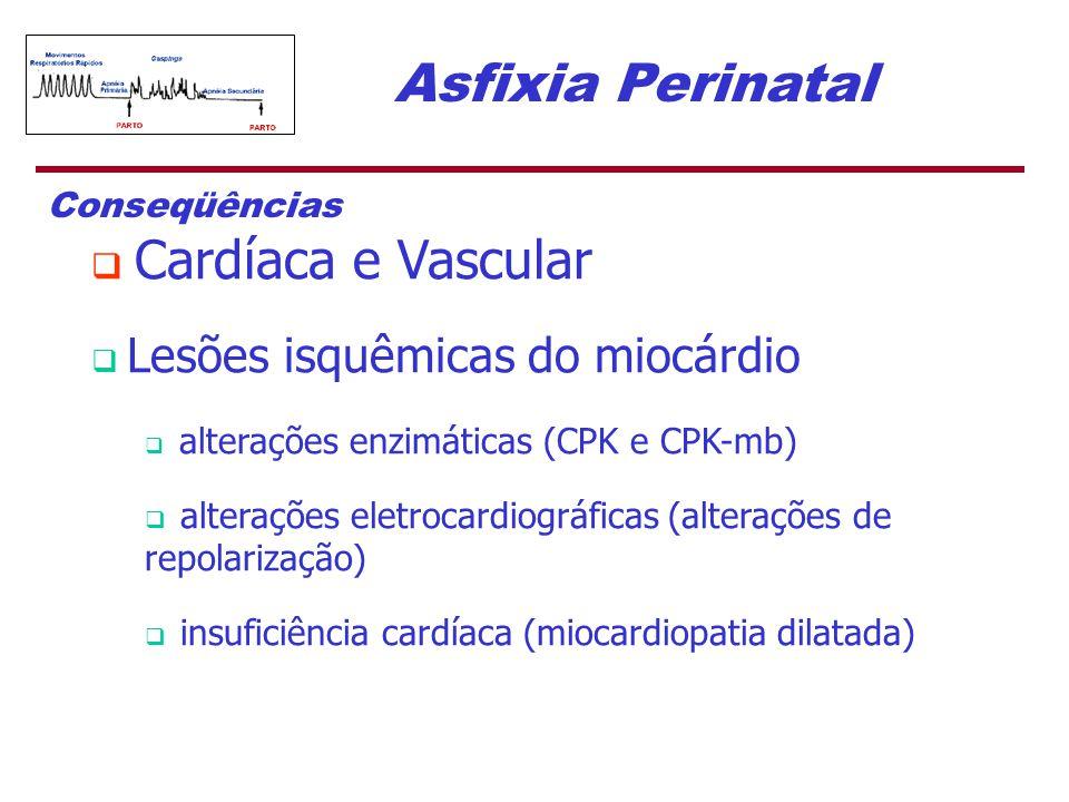 Asfixia Perinatal Conseqüências  Cardíaca e Vascular  Lesões isquêmicas do miocárdio  alterações enzimáticas (CPK e CPK-mb)  alterações eletrocard