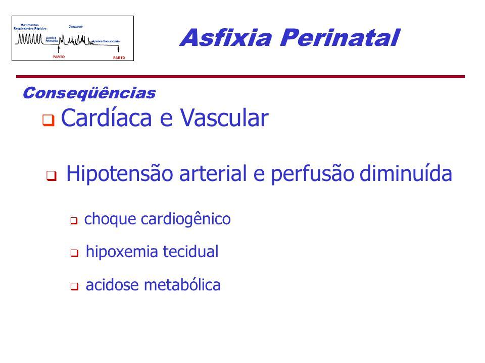 Asfixia Perinatal Conseqüências  Cardíaca e Vascular  Hipotensão arterial e perfusão diminuída  choque cardiogênico  hipoxemia tecidual  acidose