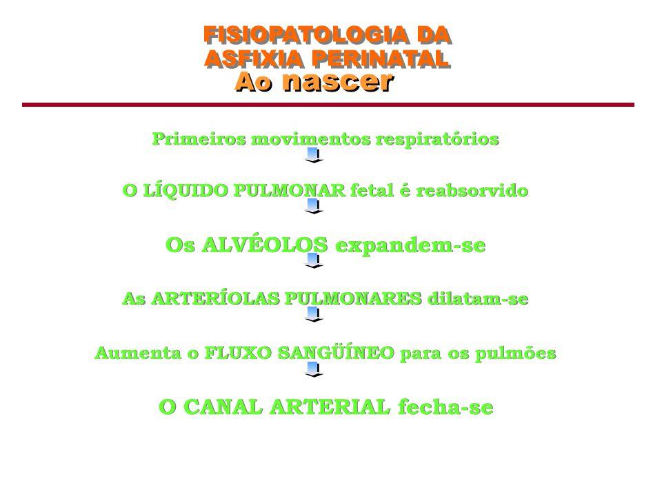 FISIOPATOLOGIA DA ASFIXIA PERINATAL Os pulmões e a circulação Nascimento Líquido Pulmonar Fetal 1o1o 2o2o 3o3o As arteríolas dilatam e o fluxo sangüíneo aumenta Movimentos Respiratórios Fluxo sangüíneo pulmonar aumenta Ducto Arterioso fechado Aorta Tronco Pulmonar