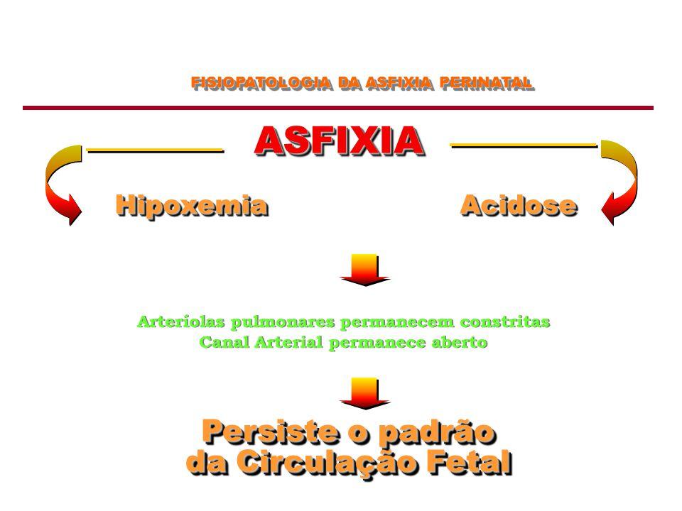 FISIOPATOLOGIA DA ASFIXIA PERINATAL ASFIXIAASFIXIA HipoxemiaHipoxemiaAcidoseAcidose Arteríolas pulmonares permanecem constritas Canal Arterial permane