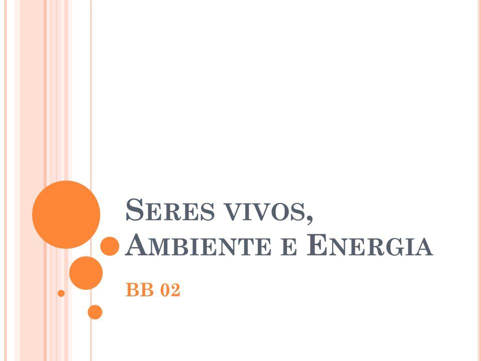 S ERES VIVOS, A MBIENTE E E NERGIA BB 02
