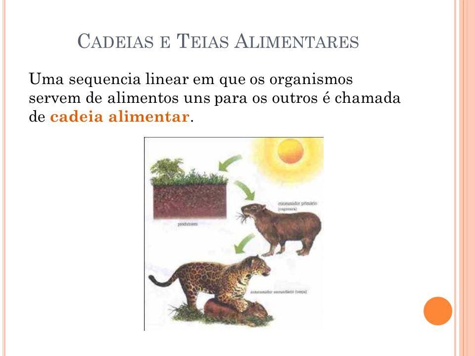 C ADEIAS E T EIAS A LIMENTARES Uma sequencia linear em que os organismos servem de alimentos uns para os outros é chamada de cadeia alimentar.
